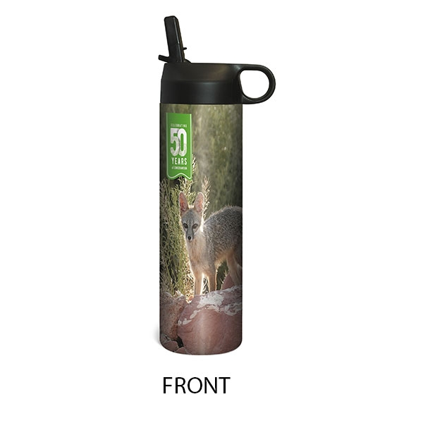 KIT FOX WATER BOTTLE